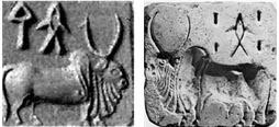 Image result for zebu mohenjodaro seal
