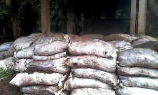 Kapur, Pengapuran Tanah Masam untuk Meningkatkan pH Tanah