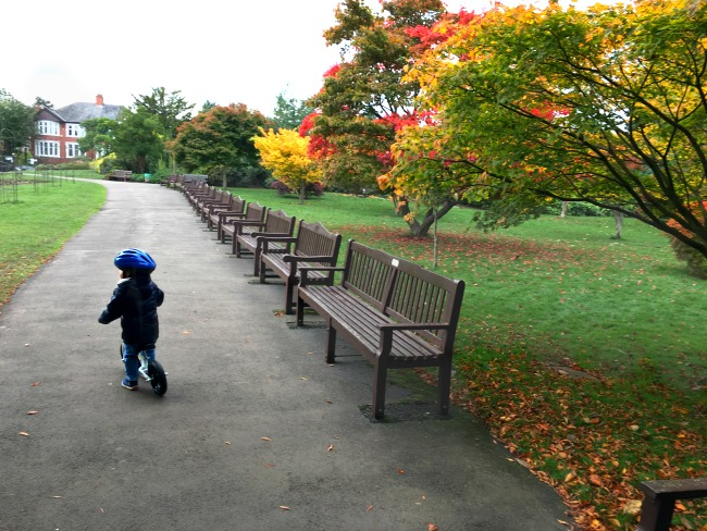 #MySundayPhoto-Number-44-toddler-on-balance-bike-in-park