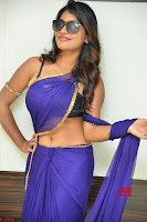 Actress Priya in Blue Saree and Sleevelss Choli at Javed Habib Salon launch ~  Exclusive Galleries 017.jpg
