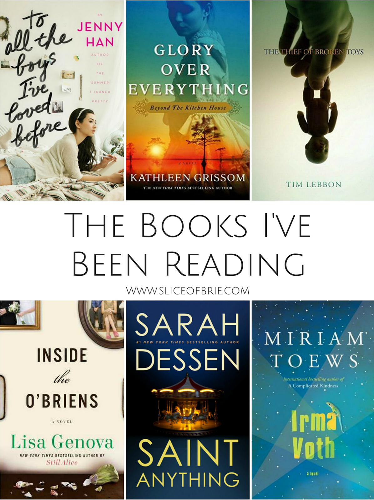 The Books I've Been Reading - Short Book Reviews on Books for Adults