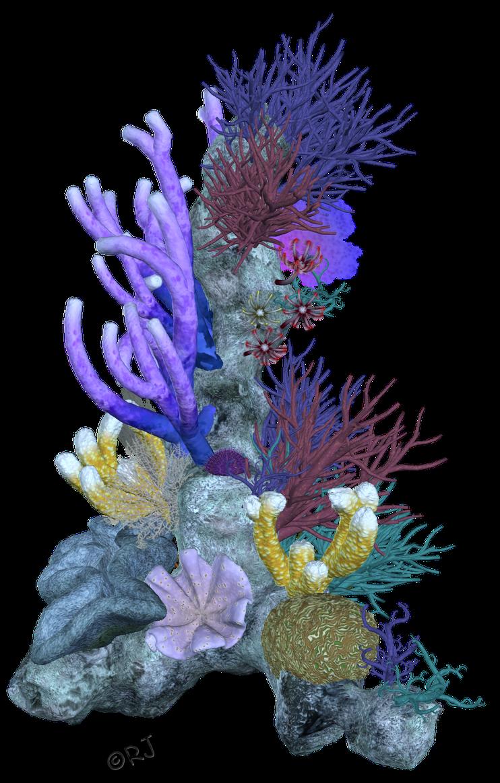 RJs Bits Bobs Props & Pieces: Coral Reefs