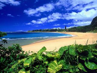 Zomers strand op een tropisch eiland