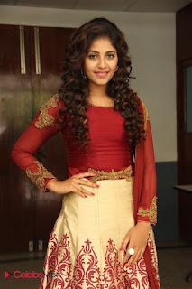 Actress Anjali Stills at Iravi Pressmeet  0009.jpg