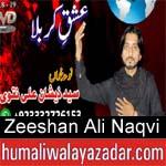 https://www.humaliwalyazadar.com/2018/09/zeeshan-ali-naqv-nohay-2019.html