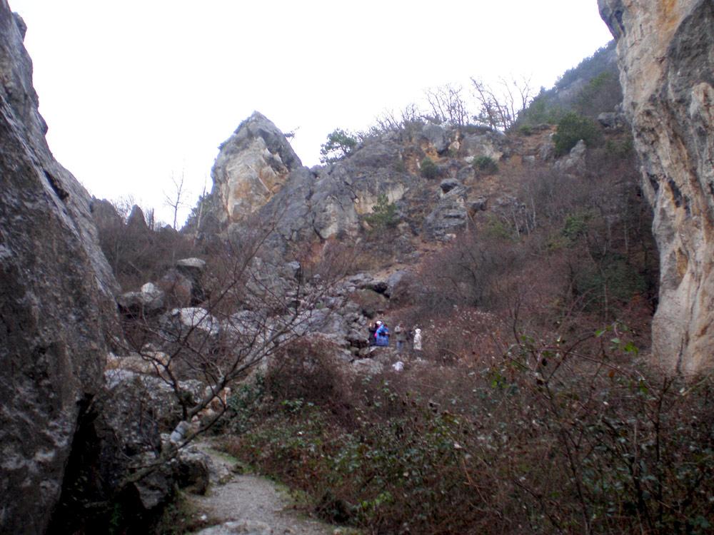 Восточная часть Никитского ущелья