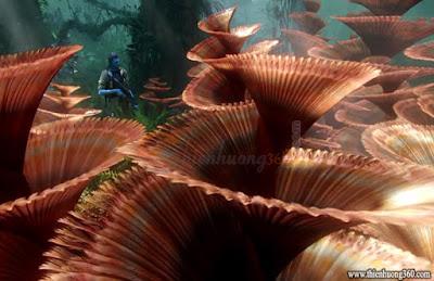 Avatar bộ phim hay nhất mọi thời đại - vẻ đẹp hành tinh Pandora