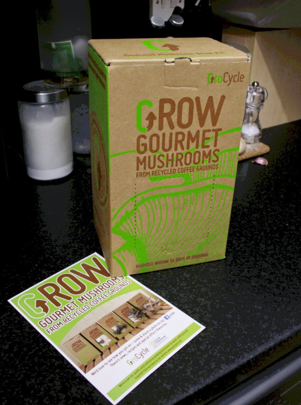 You can order a kit from GroCycle to grow fresh oyster mushrooms in your own home!
