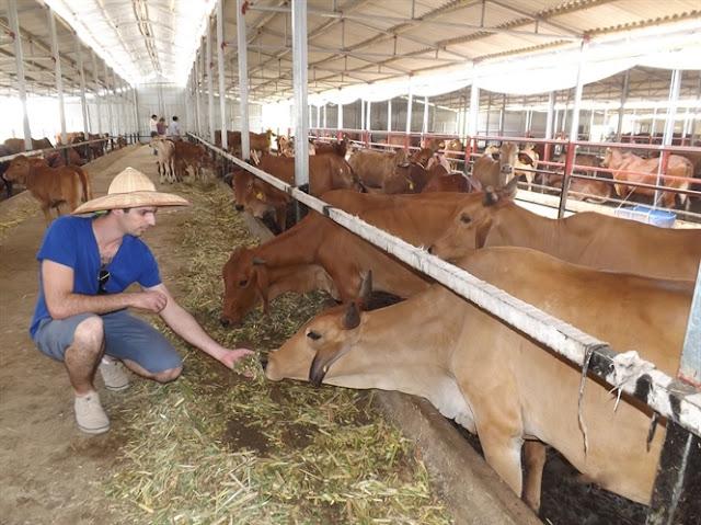 Ông Tama's trong chuyến thăm trang trại Kiều Phương.