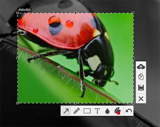 تنزيل, برنامج, لتصوير, والتقاط, الصور, من, سطح, مكتب, الكمبيوتر, واللاب, توب, وعمل, شروحات, Floomby, اخر, اصدار