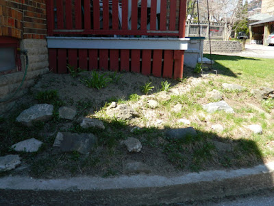 Forest Hill Toronto new rock garden before by Paul Jung Gardening Services