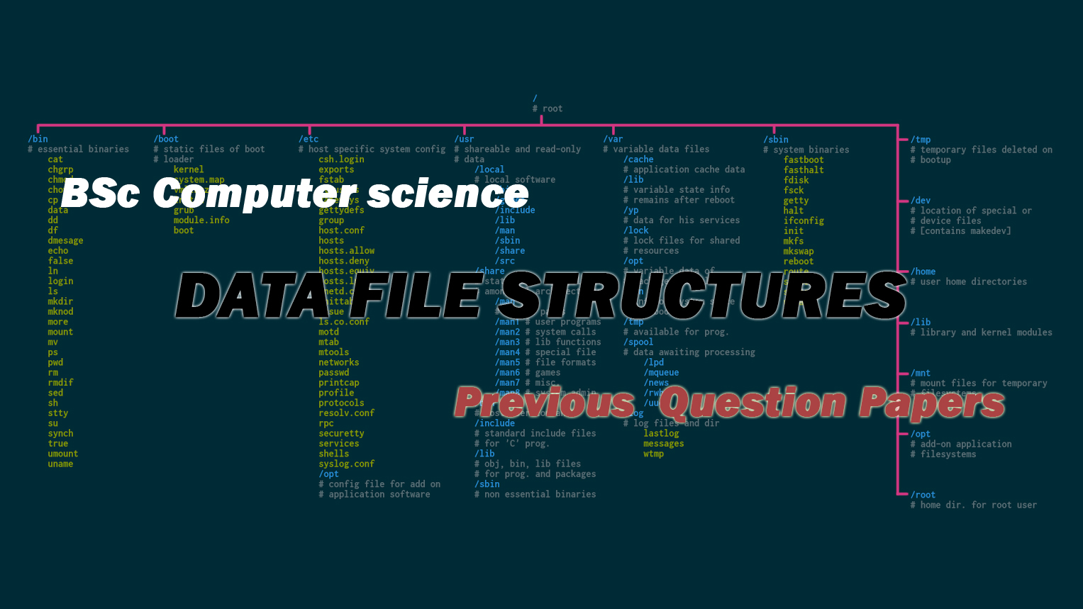 BSc Computer Science Data File Structures Previous Question Papers