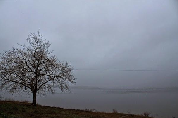 laguna niebla