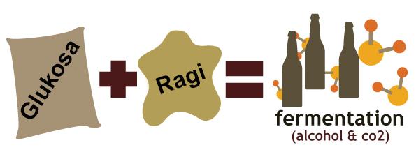 Jenis Dan Mekanisme Fermentasi Mikroorganisme Generasi Biologi