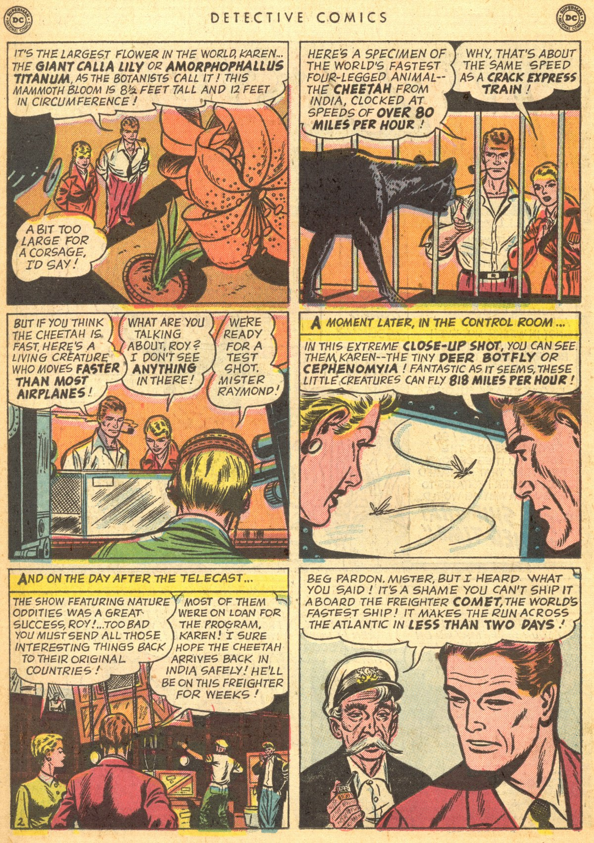 Read online Detective Comics (1937) comic -  Issue #170 - 18