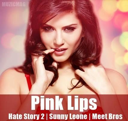 Sunny Leone Video,HD Video,Hate Story 2