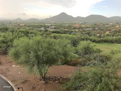 rain in Tucson, Arizona
