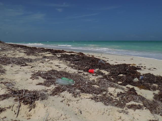 Playa Isla Mujeres con basura