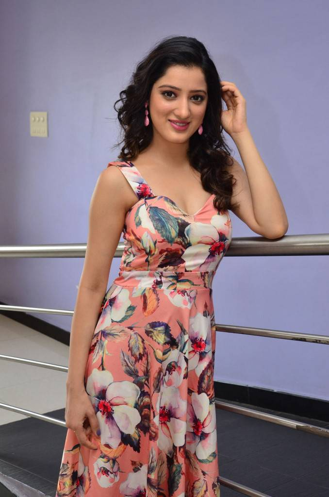 Telugu Girl Richa Panai Long Hair Photo Shoot In Red Dress