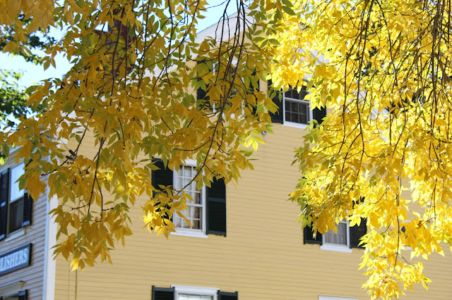 Fall in Kennebunkport, Maine
