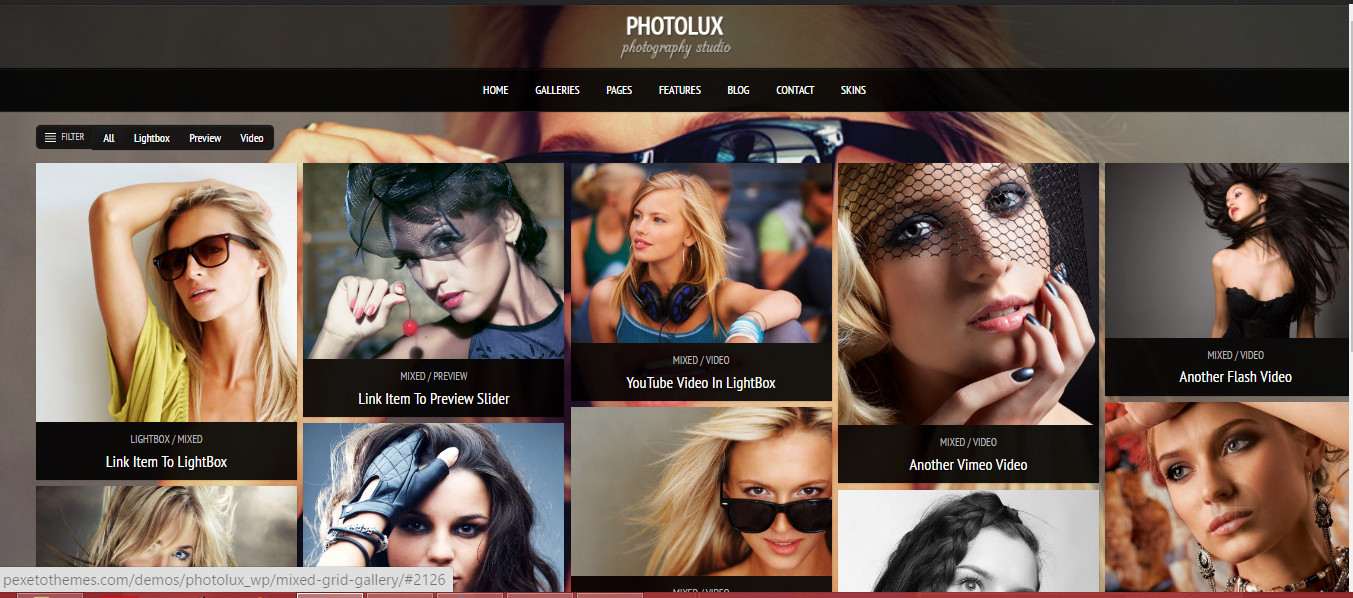Photolux- Grid WordPress Themes