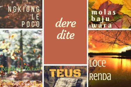 lima lagu manggarai terbaik yang bercerita jujur tentang manggarai