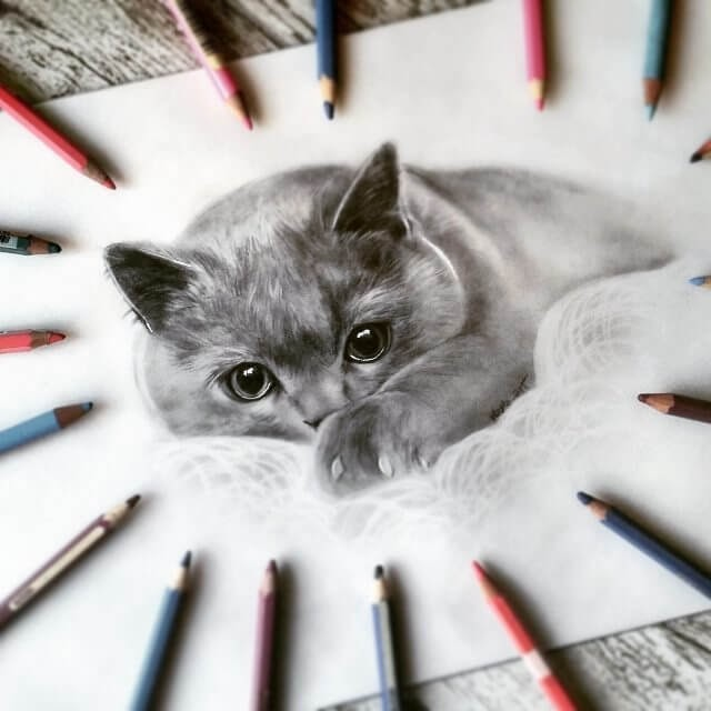 11-Kitten-Majla-Colorful-Precise-and-Realistic-Animal-Drawings-www-designstack-co