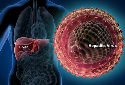 Pengobatan Hepatitis