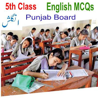 All Solved Notes of Punjab Board English MCQs Chapter No Seven
