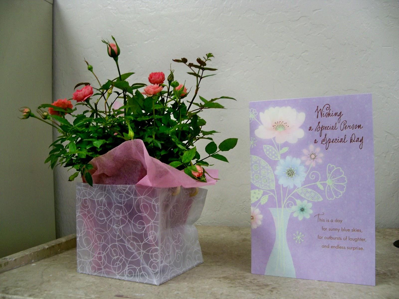 Romantic Flowers Birthday Flowers
