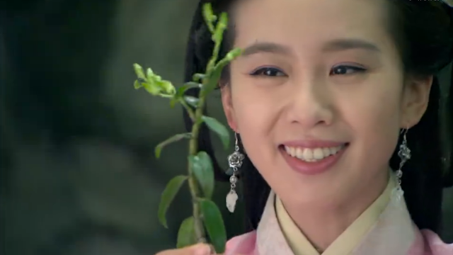 Liu Shi Shi in 2016 popular cdrama The Imperial Doctress