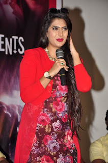 dandu telugu movie audio launch event