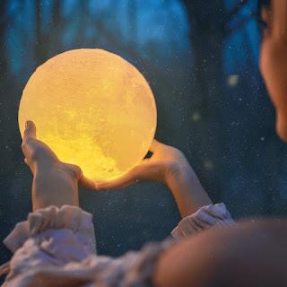 The Fallen Moon Light