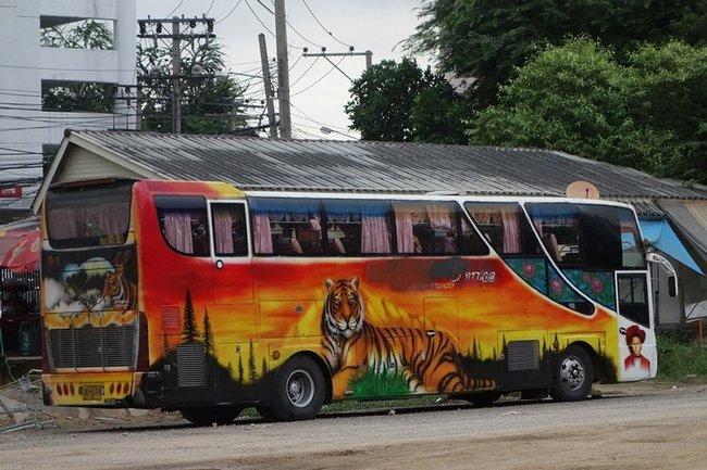 рисунок тигра на автобусе