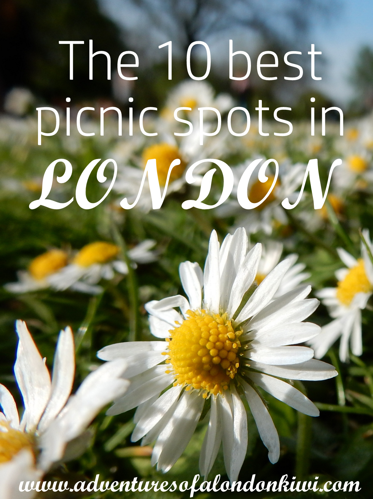 The 10 best picnic spots in London Adventures of a London Kiwi