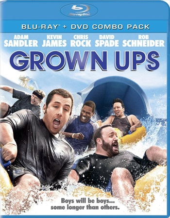 Download Grown Ups 2010 Dual Audio Hindi 480p BluRay 300mb