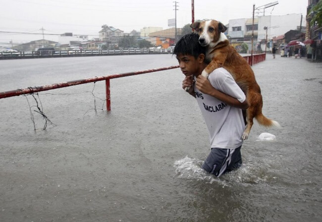 16 Pictures Of Children Restored Our Faith In Humanity - A boy carries his dog through floodwaters caused by the monsoon rain in Manila, the Philippines.
