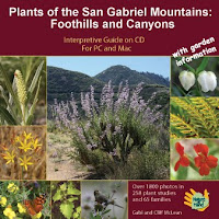 Plants of the San Gabriel Mountains CD