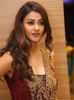 Aditi Arya Spotted At Telugu Film Ism Music Launch Hyderabad