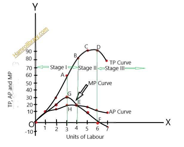 law-of-variable-proportion