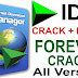 Internet Download Manager 6.31 Build 2 Full Version
