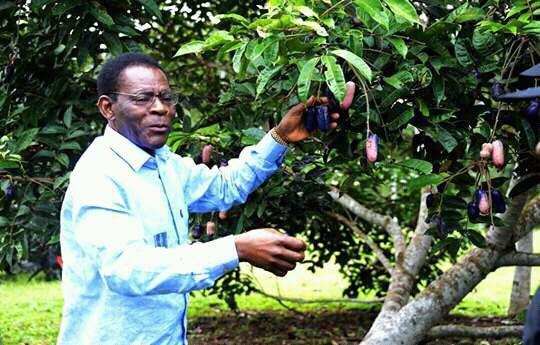 La radio macuto la voz de los sin voz de guinea ecuatorial aquiacute teneacuteis el video porn - 2 3