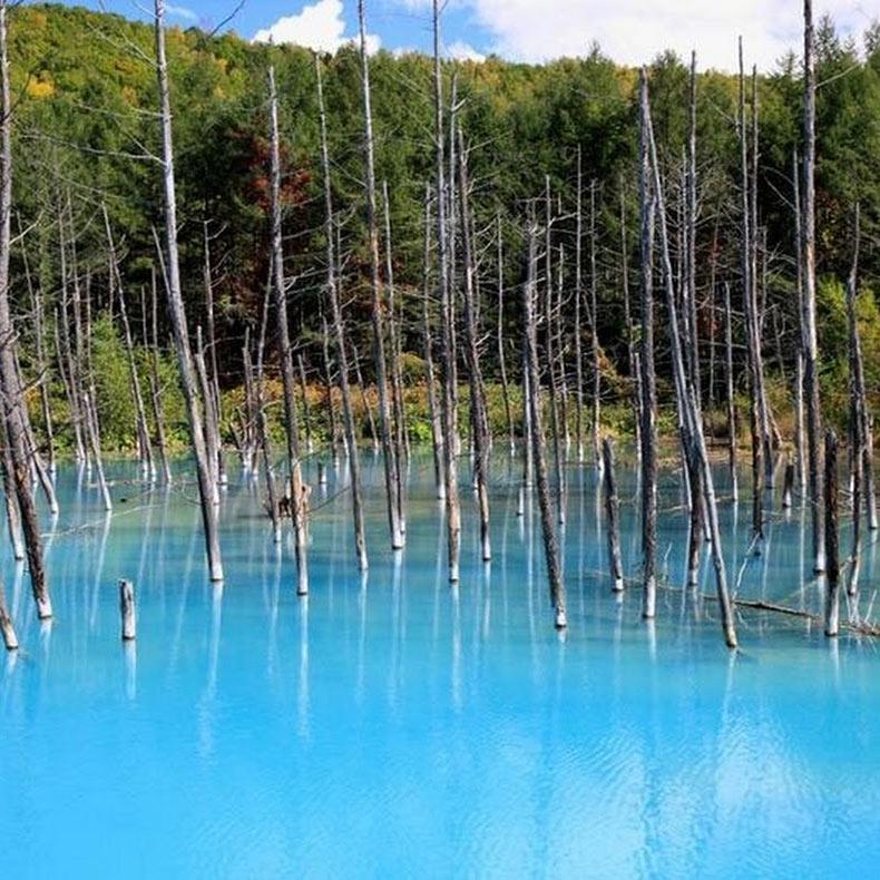 El Estanque Azul | Japón