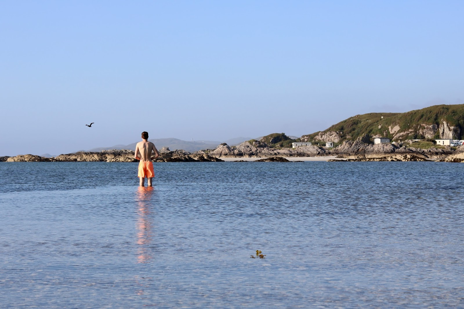 Cal Mc enjoying a dip in the sea in Arisaig