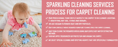 Carpet Cleaning Servicve