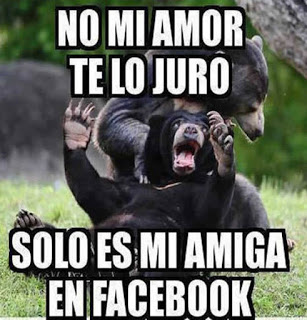 imagenes - animales - chistosos - frases - risa - whatsapp