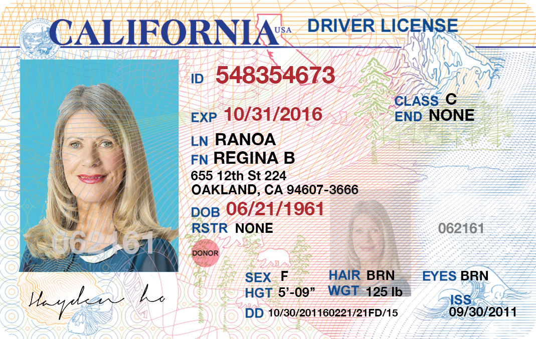 That Info Driver Fake You Or Shah License I Id Want G Images Documents Of Scanned Cards Center Any Other Will And Type Make Edit