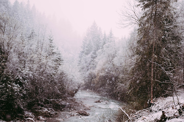 Natur, Tod, Trauer, Trauerverarbeitung, Schnee, Allgäu, Fluss