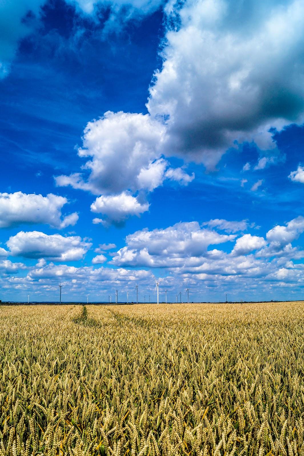 Farma_wiatrowa_w_Albigowej_co_zwiedzic