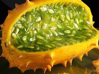 african cucumber fruit images